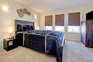 Photo 16: 289 MARQUIS Heights SE in Calgary: Mahogany House for sale : MLS®# C4130639