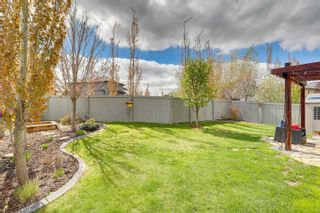 Photo 49: 718 CAINE Boulevard in Edmonton: Zone 55 House for sale : MLS®# E4248900