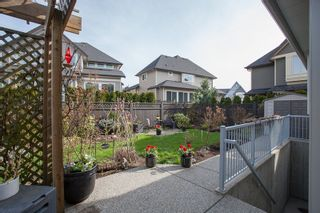 Photo 20: 2520 162 Street in South Surrey: Home for sale : MLS®# F1407632