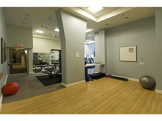 """Photo 14: 408 1225 RICHARDS Street in Vancouver: Downtown VW Condo for sale in """"Eden"""" (Vancouver West)  : MLS®# V1069559"""