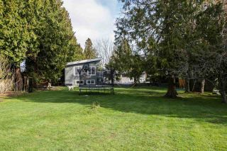 Photo 12: 5030 CLIFF Drive in Delta: Cliff Drive House for sale (Tsawwassen)  : MLS®# R2558045