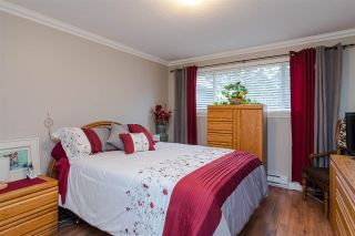 Photo 28: 20510 48A Avenue in Langley: Langley City House for sale : MLS®# R2541259
