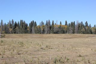 Photo 10: ON Township Road 355A: Rural Red Deer County Land for sale : MLS®# A1039276