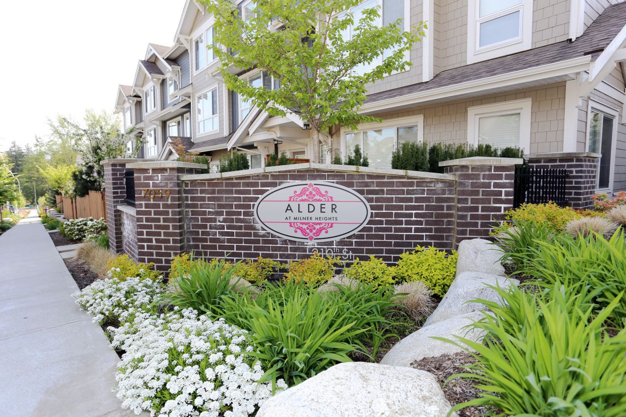 """Photo 1: Photos: 44 7059 210 Street in Langley: Willoughby Heights Townhouse for sale in """"Alder"""" : MLS®# R2263241"""