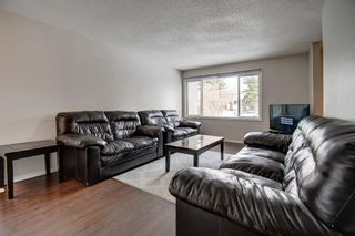 Photo 10: 180 Maitland Place NE in Calgary: Marlborough Park Detached for sale : MLS®# A1048392