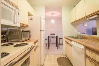 Photo 14: 405 525 56 Avenue SW in Calgary: Windsor Park Apartment for sale : MLS®# A1143592