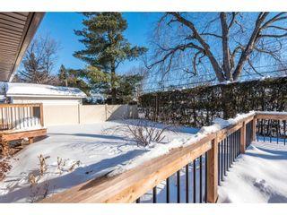 Photo 21: 18 OAKVIEW AVENUE in Ottawa: House for sale : MLS®# 1138366