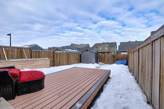Photo 44: 134 Auburn Crest Way SE in Calgary: Auburn Bay Detached for sale : MLS®# A1061710