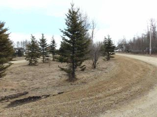Photo 10: 81 15065 TWP RD 470: Rural Wetaskiwin County Rural Land/Vacant Lot for sale : MLS®# E4240270