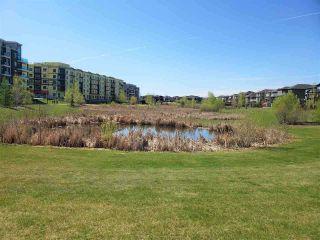Photo 31: 219 1316 WINDERMERE Way in Edmonton: Zone 56 Condo for sale : MLS®# E4223412