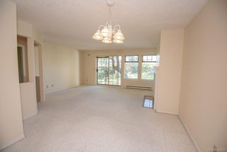 Photo 14: 4 909 Admirals Rd in Esquimalt: Es Esquimalt Row/Townhouse for sale : MLS®# 844251