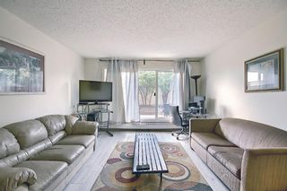 Photo 11: 119 333 Garry Crescent NE in Calgary: Greenview Apartment for sale : MLS®# A1139361