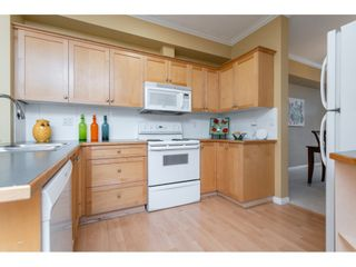 Photo 8: 20 11860 RIVER ROAD in Surrey: Royal Heights Townhouse for sale (North Surrey)  : MLS®# R2360071