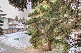 Photo 38: 64 3705 Fonda Way SE in Calgary: Forest Heights Apartment for sale : MLS®# A1065357
