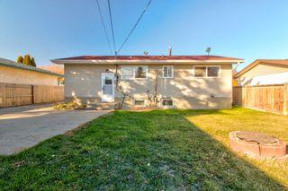Photo 28:  in Edmonton: Zone 22 House for sale : MLS®# E4260068