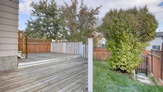 Photo 34: 210 Edgedale Place NW in Calgary: Edgemont Semi Detached for sale : MLS®# A1152992