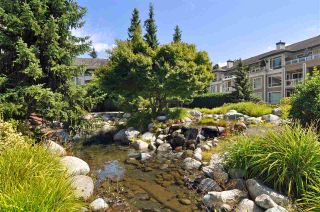 """Photo 12: 219 3608 DEERCREST Drive in North Vancouver: Roche Point Condo for sale in """"Deerfield at Ravenwoods"""" : MLS®# R2198119"""