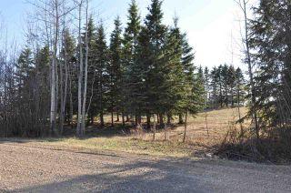 Photo 40: 10 57126 Range Road 12: Rural Barrhead County Rural Land/Vacant Lot for sale : MLS®# E4241768