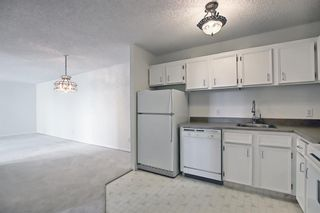 Photo 7: 506 111 14 Avenue SE in Calgary: Beltline Apartment for sale : MLS®# A1154279