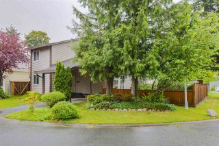 Photo 2: 8126 122 STREET in Surrey: Queen Mary Park Surrey House for sale : MLS®# R2588558