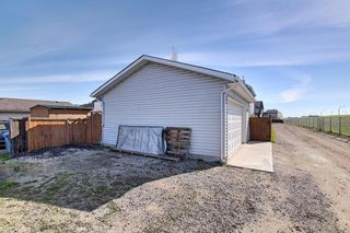 Photo 36: 149 Elgin Place SE in Calgary: McKenzie Towne Detached for sale : MLS®# A1106514