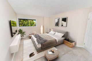 Photo 4: 308 3900 Shelbourne St in Saanich: SE Cedar Hill Condo for sale (Saanich East)  : MLS®# 874690