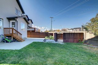 Photo 24: 135 Country Hills Heights in Calgary: Country Hills Detached for sale : MLS®# A1153171