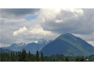 Photo 10: 316 223 MOUNTAIN Highway in North Vancouver: Lynnmour Condo for sale : MLS®# V944047