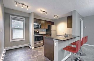 Photo 17: 1214 1317 27 Street SE in Calgary: Albert Park/Radisson Heights Apartment for sale : MLS®# A1142395