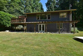 "Photo 23: 2508 LOWER Road: Roberts Creek House for sale in ""Roberts Creek"" (Sunshine Coast)  : MLS®# R2598378"