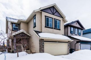 Main Photo: 196 CHAPALINA Heights SE in Calgary: Chaparral House for sale : MLS®# C4174966