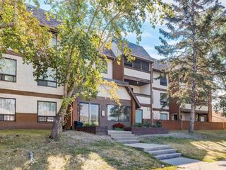 Photo 1: 302 1712 38 Street SE in Calgary: Forest Lawn Apartment for sale : MLS®# A1087087