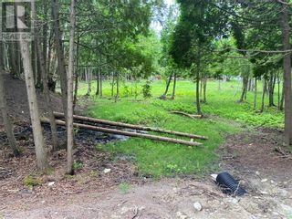 Photo 9: Lot 1 Indian Mountain Lane in Nemi: Vacant Land for sale : MLS®# 2097541