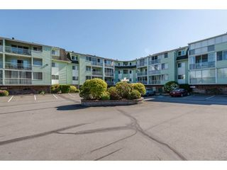 """Photo 1: 116 31850 UNION Street in Abbotsford: Abbotsford West Condo for sale in """"Fernwood Manor"""" : MLS®# R2169437"""