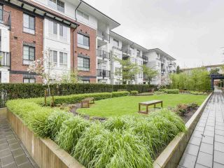 "Photo 14: 316 555 FOSTER Avenue in Coquitlam: Coquitlam West Condo for sale in ""FOSTER BY MOSAIC"" : MLS®# R2163342"