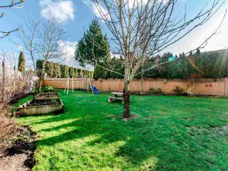 """Photo 20: 21664 50B Avenue in Langley: Murrayville House for sale in """"MURRAYVILLE"""" : MLS®# R2432446"""