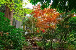 """Photo 22: 1820 FULTON Avenue in West Vancouver: Ambleside House for sale in """"Ambleside"""" : MLS®# R2577844"""