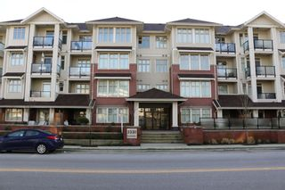 Photo 14: 404-2330 SHAUGHNESSY STREET in PORT COQUITLAM: Condo for sale (Port Coquitlam)  : MLS®#  V1123158