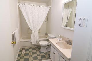 Photo 23: 10831 68 Avenue in Edmonton: Zone 15 House for sale : MLS®# E4259049