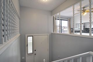 Photo 3: 155 Templevale Road NE in Calgary: Temple Detached for sale : MLS®# A1119165
