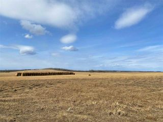 Photo 1: HWY 39 RR 34: Rural Leduc County Rural Land/Vacant Lot for sale : MLS®# E4235214