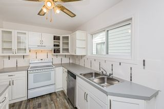 Photo 19: 12002 41 Street in Edmonton: Zone 23 House for sale : MLS®# E4239522