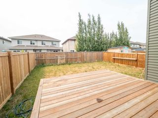 Photo 40: 17228 71 Street in Edmonton: Zone 28 House for sale : MLS®# E4254072