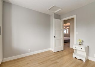 Photo 33: 6207 84 Street NW in Calgary: Silver Springs Detached for sale : MLS®# A1147522