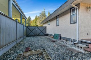 Photo 49: 11296 153A STREET in Surrey: Fraser Heights House for sale (North Surrey)  : MLS®# R2512149