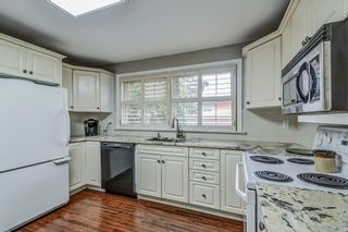 Photo 11: 85 Gray Road in Hamilton: Stoney Creek House (Bungalow) for sale : MLS®# X3628704