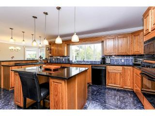 Photo 9: 21980 100TH Avenue in Langley: Fort Langley House for sale : MLS®# F1448299
