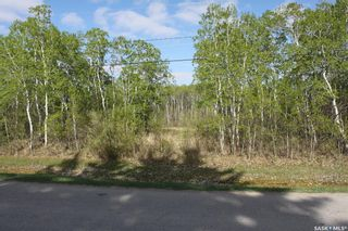 Photo 2: 408 Ohlen Street in Stockholm: Lot/Land for sale : MLS®# SK847252