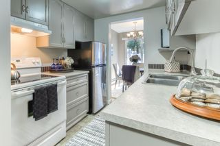 Photo 9: 53 5301 204TH Street in Langley: Langley City Townhouse for sale : MLS®# R2503229