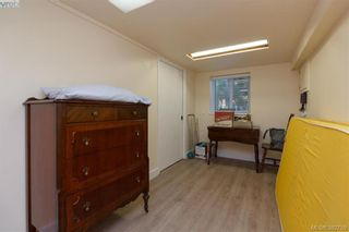 Photo 14: 4141 Tuxedo Dr in VICTORIA: SE High Quadra House for sale (Saanich East)  : MLS®# 769183